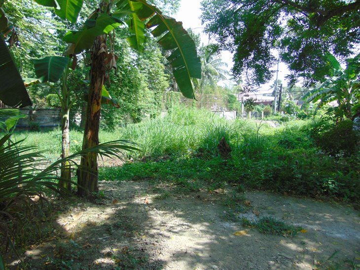 commercial-lot-located-in-talamban-cebu-city