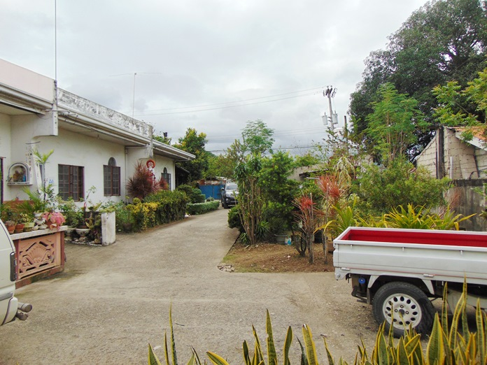 lot-for-sale-with-apartments-and-single-house-in-canduman-mandaue-city