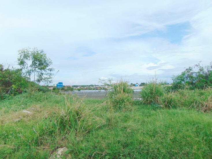 south-road-properties-srp-lot-for-sale
