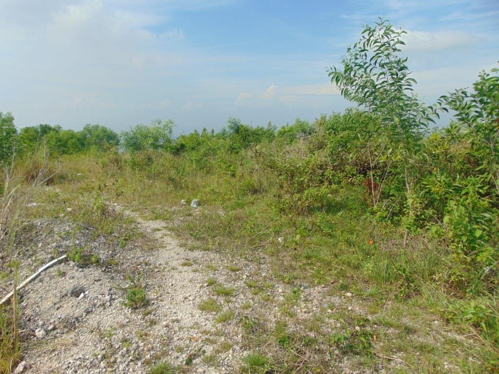 alta-vista-golf-and-country-club-lot-for-sale-890-sqm